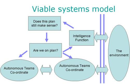 Viable Systems Model